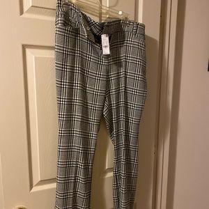 New York and Co Pants